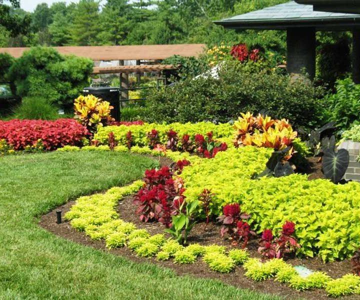 Garden Design – Stuff You Should Enable Your Landscape Designer Know